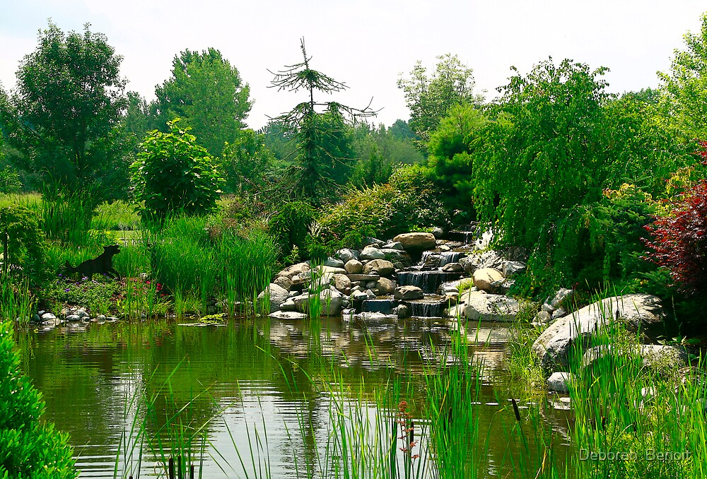 The Nursery Pond Reflections by Deborah  Benoit