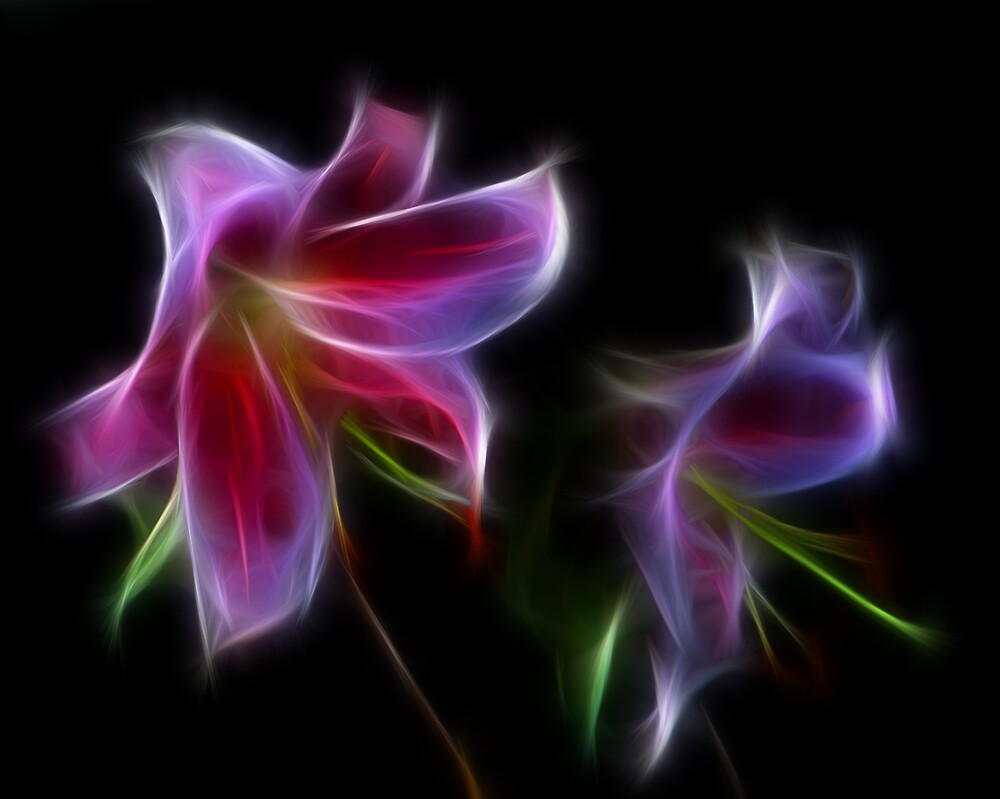 Fractalius Lily Reflection by dumbomsa