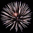 Fireworks_2 by Leslie Patton