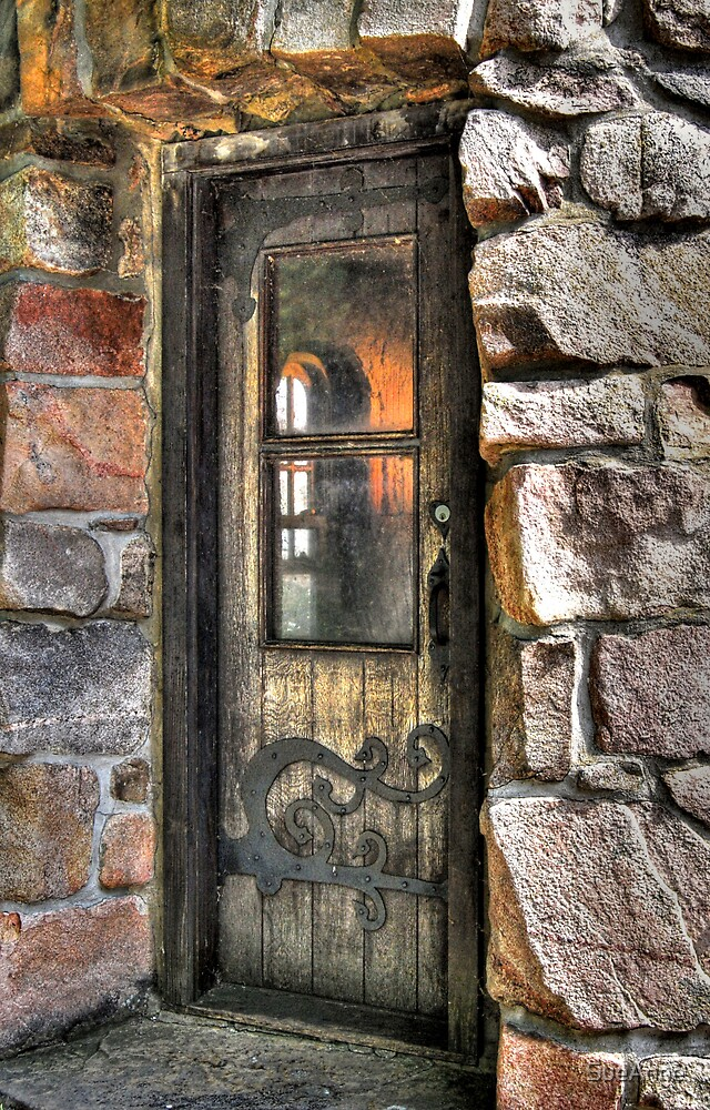 Wooden Castle Door by SueAnne