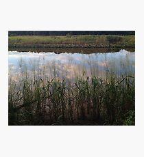 Tidal Summer  Photographic Print