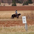 Riding in the Outback of Nova Scotia by AnnDixon