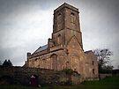Woodspring Priory, Somerset, England by trish725