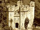 The Gatehouse, Dunster Castle by trish725