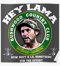 Hey Lama how bout a lil something for the effort Poster