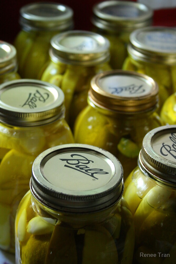 Canning Pickles by Renee Tran