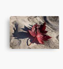 Deep Red Maple Leaf Canvas Print