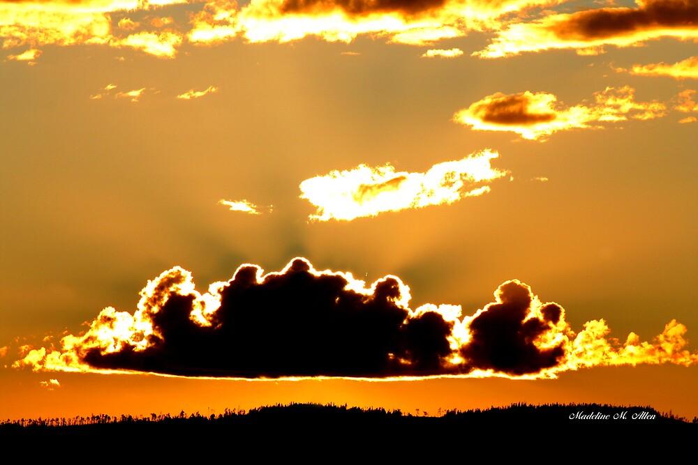 WILDERNESS SUNSET by Madeline M  Allen