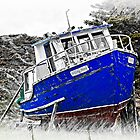 Willing Mind Fishing Vessel by Vickie Emms