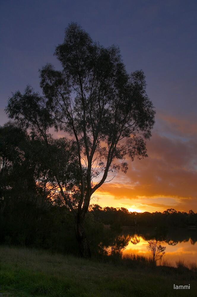 Sunset by lammi