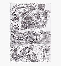 Sea Monsters Photographic Print