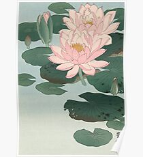 Flowering Water Lily, Ohara Koson Poster