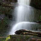 Hidden Falls by Lolabud