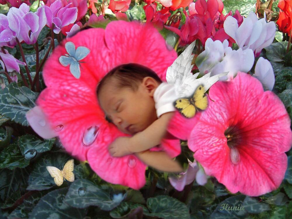 Baby Fairy by Ilunia Felczer