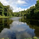 Castlecomer Lake by Martina Fagan