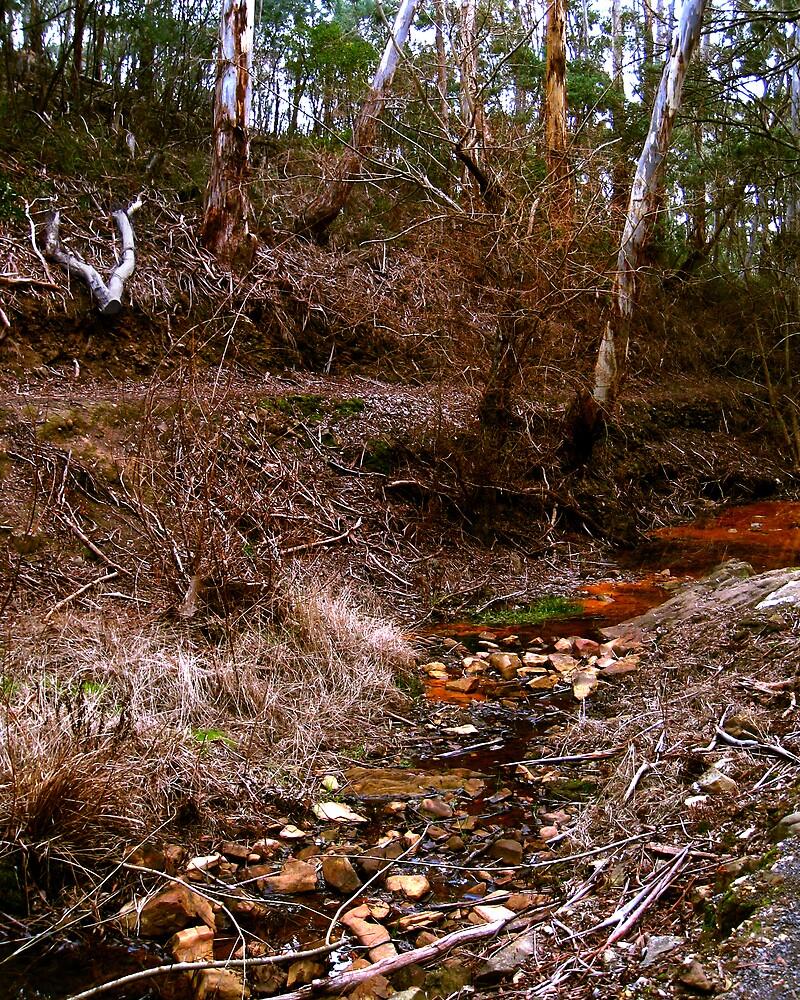 Creek by Daz Zammit