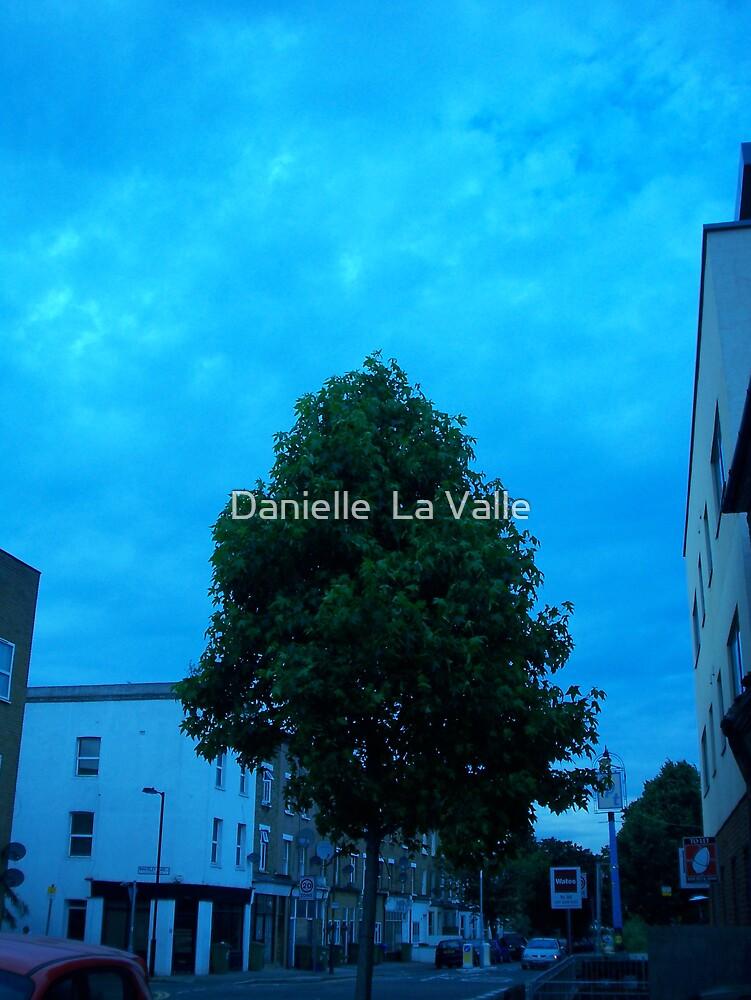 Evening Walk 2 of 4 by Danielle  La Valle