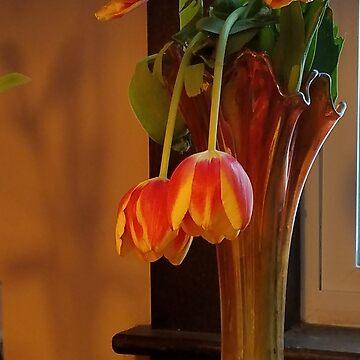 Petals by veronicafiasco