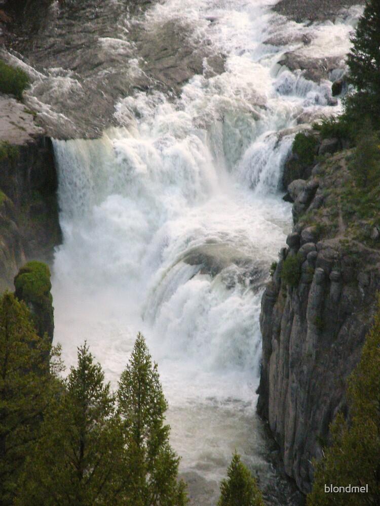 Lower Mesa Falls by blondmel