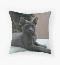 Little Gray Throw Pillow