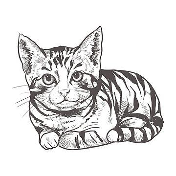 Cat illustration by DCstore