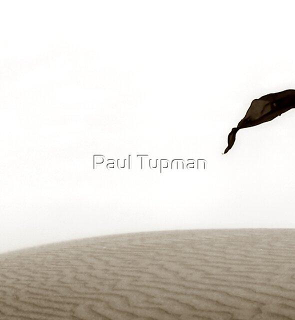 Life by Paul Tupman
