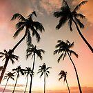 Maui Paradise by Shari Mattox-Sherriff