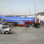 Southwest Airlines by Laura Puglia