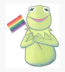 Gay Kermit Photographic Print
