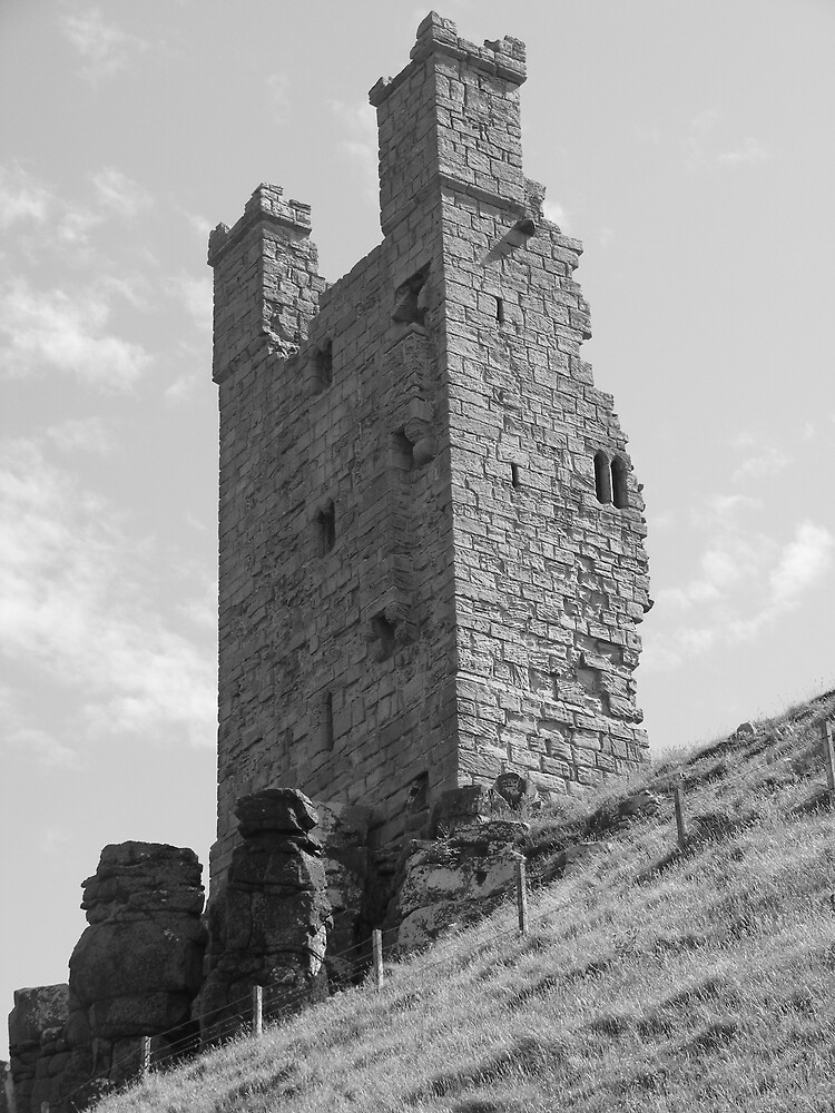 Dunstanburgh castle,Northumberland. by WyeLookAtThis