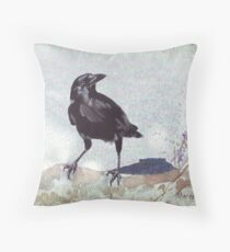 Keepers of the Sacred Law Throw Pillow