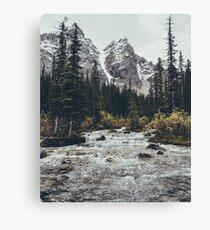 mountain rapids Canvas Print