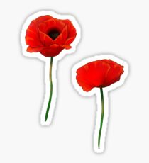 Poppy Pattern Sticker
