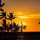 Hawaiian Sunset by SteveHphotos
