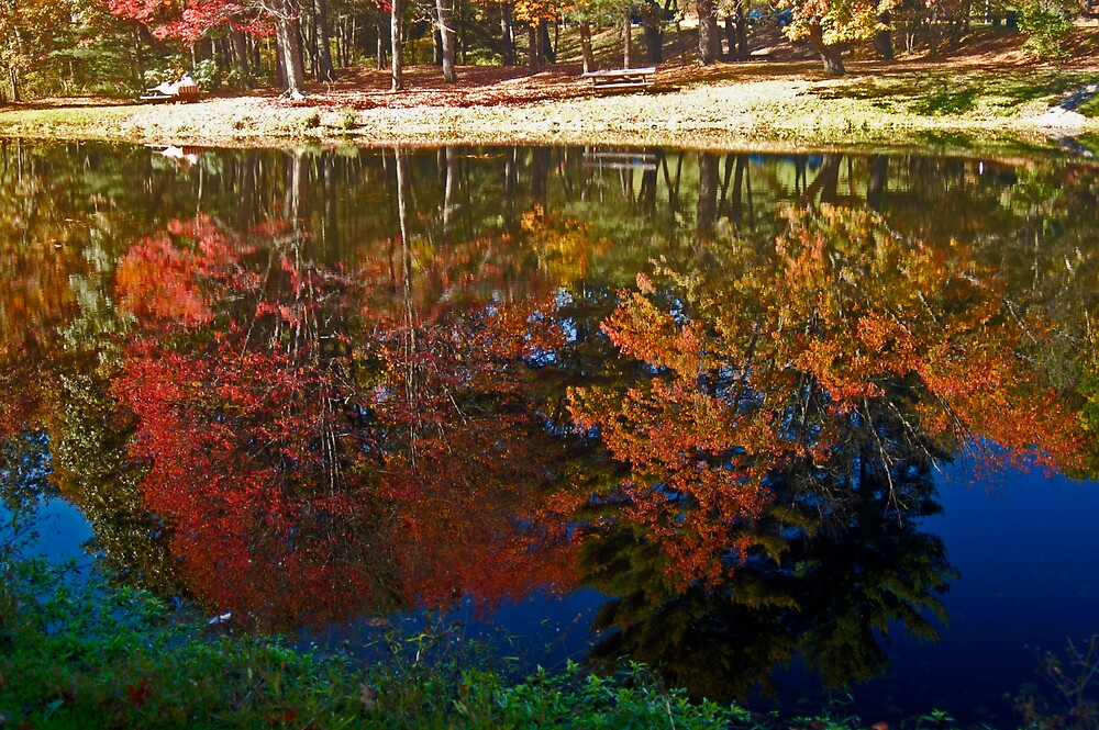 Reflection by Ronald Smith