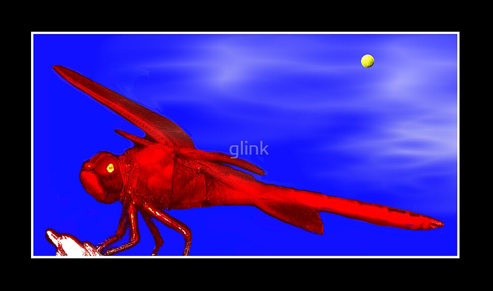 Red Dragonfly by glink
