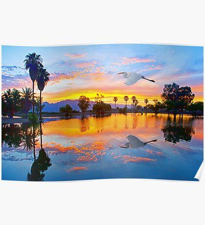 Egret's Sunrise Poster