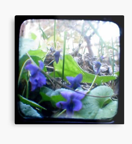 At the bottom of the Garden Metal Print