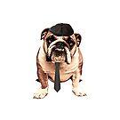 Bulldog 20's by skorretto
