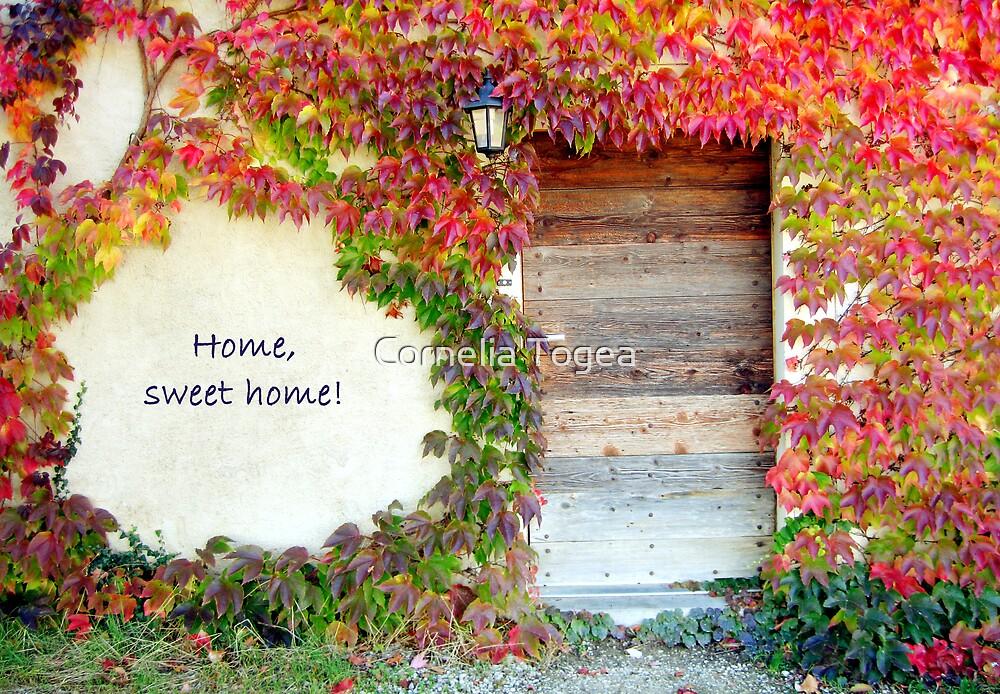 home, sweet home by Cornelia Togea