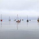 Fog on the Horizon by John Thurgood