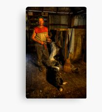 The Shearer. Canvas Print