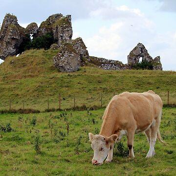 Ireland ruins by croper