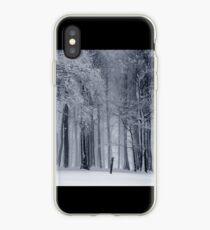 invierno iPhone Case