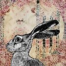 The Hare and the Moon by Bronia Sawyer