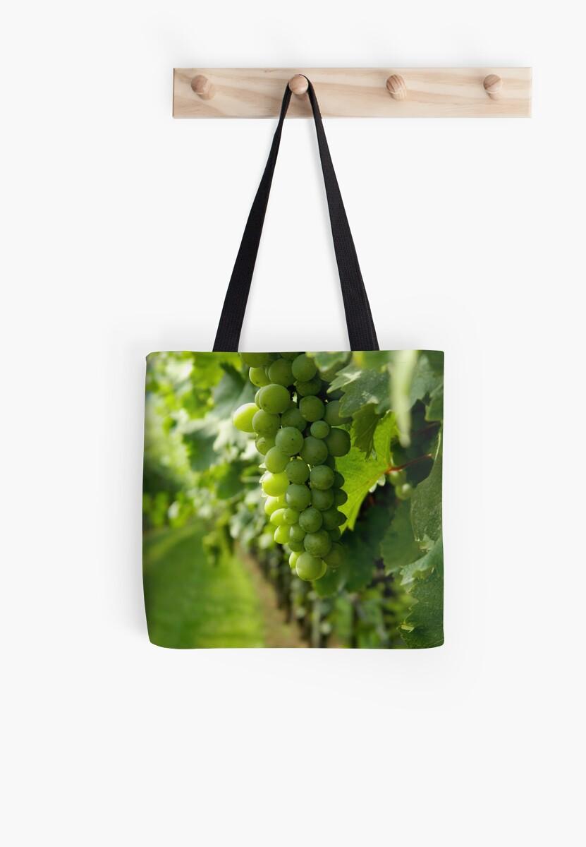 Vineyard View   ^ by ctheworld