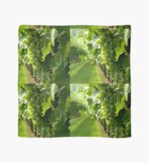 Vineyard View   ^ Scarf