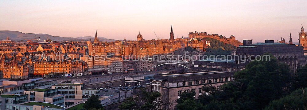 Rooftops of Edinburgh by Andrew Ness - www.nessphotography.com