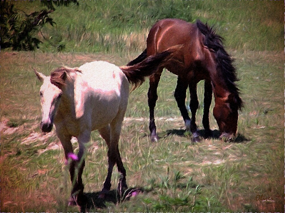 Graze In The Noonday Sun by Charles Oliver