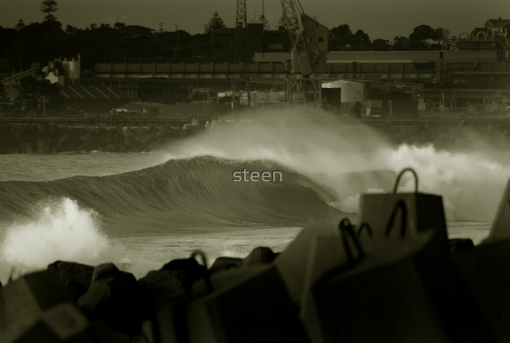 human and nature by steen